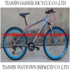 Tianjin 20  24  26  Mountain Bicycles/MTB Bicycles 21s
