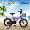 Bicicletas de montanha do estilo livre das crianças com rodas do treinamento