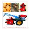 De goede Hoge Efficiency van Prestaties Één Maaimachine van de Aardappel van de Rij