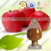 Produto comestível de Acvp 5% 8% do pó do vinagre de cidra de Apple
