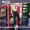 Одежда оптовой продажи бака гимнастики резвится хлопок Джерси (WC0008)