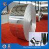 Coils di alluminio con Popular Quality