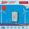 De Diepe Cyclus van de Batterij 2V250ah van Opzv voor de Turbine van de Wind