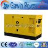 conjunto de generador diesel certificado Ce del buen funcionamiento 30kVA