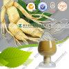 Panax van de Prijzen van de Wortel van de Ginsengen van de Ginsengen van Halal het Uittreksel van Ginsengen
