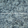 Flooring、Wall、Pavingのための割引White Tiger Skin Granite Tile