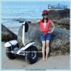 Adults Folding Scooter Electric Balance Chariot 2000Wのための2車輪Electric Scooter