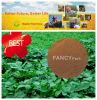 80 % fúlvicos Ácido fertilizante orgánico en polvo