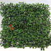 벽 훈장 인공적인 산울타리 녹색 잎 담