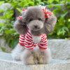 China Wholesale Dog Clothes e Accessories