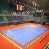 Futsal와 Soccer Court를 위한 실내 Outdoor PVC Interlock/Roll Sports Flooring