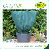 Onlylife a réduit la couverture personnalisée par modèle d'usine de jardin pour la protection des plantes
