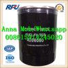Filtres à essence réutilisables 4206080 dans l'usine de la Chine