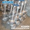 Valvole a saracinesca criogeniche dell'acciaio di getto API600