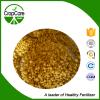 NPK Fertilizer (12-12-17+2MGO) con lo SGS Certificate