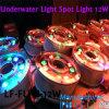 Hohes Brunnen-Licht des Qualtity Ring-LED, DMX RGB Farben-Änderungs-Ring-Licht