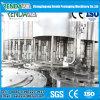 Haustier-Flaschen-Wasser-Flaschenabfüllmaschine/System/Pflanze/Zeile