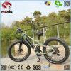 Motorino elettrico di buona qualità della bici della spiaggia di vendita della gomma grassa calda all'ingrosso di modo