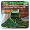 OEM/ODMの使用できるクロレラの粉