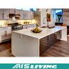 Mobília industrial UV dos gabinetes de cozinha do lustro elevado (AIS-K220)
