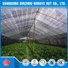 Qualität Vingin HDPE gestricktes Plastikineinander greifenstrickendes Nettosun-Farbton-UVnetz