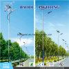 Nieuwste Openlucht ZonneStraatlantaarn Lamp/LED (LED210W)