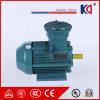 Explosiebestendige Elektrische AC Motor met 380V 0.12kw