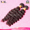 Cuticle Intact Prefectly Human Hair 7A Grade Virgin Brazilian Curly Hair Deep Wave