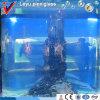Aquarium acrylique rond de réservoir de poissons