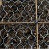 安いエレクトロによって電流を通される金網の網の六角形のネット