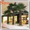 Árvore falsificada plástica da planta da palma de Washington da fonte de China