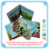 Hard Cover Child Book Printing/ English Story Children Book/ Fairy Tale Child Book