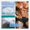Teste cru branco Phenylpropionate 1255-49-8 do pó do ganho do músculo de 99%