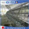 Cages de poulet pour la ferme avicole pour le Nigéria un type