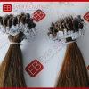 Extensions pré métallisées de cheveu de boucle avec les cheveux humains de 9A Remy