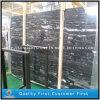 Lastre d'argento del marmo del drago della Cina per le mattonelle di pavimentazione e Worktops