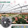 Tipo de suspensão ventilador de refrigeração da ventilação para estufas da flor