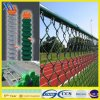 6ft Green PVC Coated Chain Link Fence