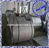 SS 310S Heiß-gerolltes Steel Coil Price