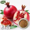 Extracto natural puro de casca de romã Extracto ácido ellagico 10% -40%; Polifenóis 40%