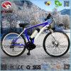 كهربائيّة [موونتين بيك] رياضة [متب] درّاجة لأنّ عمليّة بيع