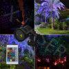 Het verre Controleerbare RGB Licht van het Landschap van de Tuin van de Laser Openlucht