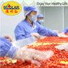 Venda por atacado secada orgânica Goji da fruta da ETB Goji da nêspera