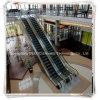 Оптовый эскалатор цены изготовления лифта