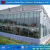 Estufa de vidro Growing da multi extensão da flor com sistemas hidropónicos