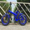 48V 500W 20の折る脂肪質のタイヤ浜の雪の電気バイク