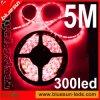LEIDENE RGB SMD3528, het LEIDENE SMD5050 Licht van de Strook (BS-s10-001)