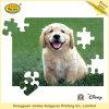 Jogo das crianças do enigma Jigsaw do cartão