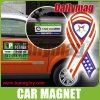 Magnete dell'automobile