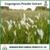 5:1 dell'estratto della polvere Imperata/di Cogongrass Cylindrica, 10:1